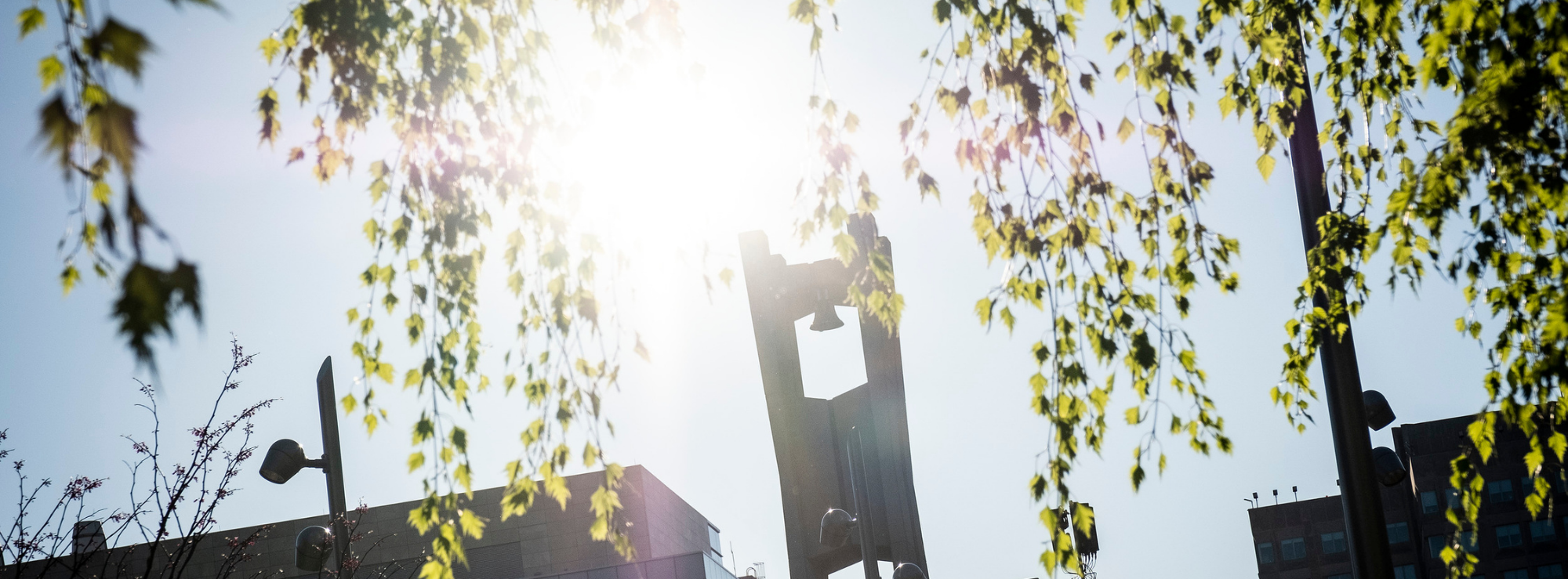 Photo of Temple University bell tower with sunshine and trees.